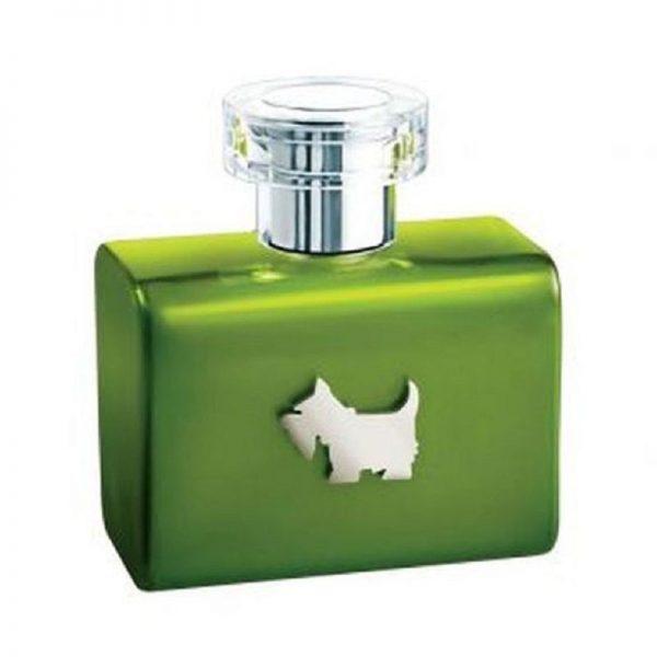 perfume de mujer ferrioni terrier green