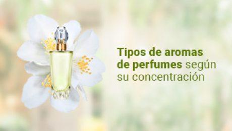 banner de redes de tipos de aromas de perfumes segun su concentracion