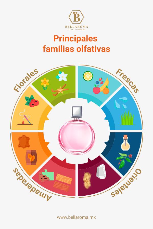infografia con principales familias olfativas perfumes