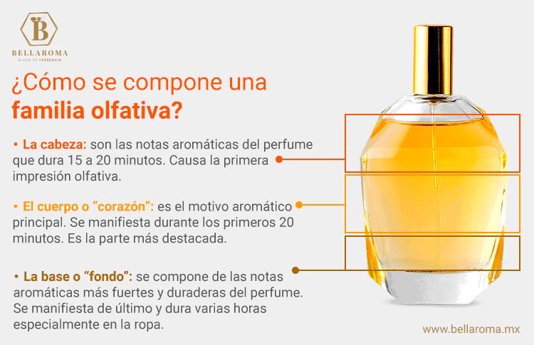 infografia sobre como se compone una familia olfativa